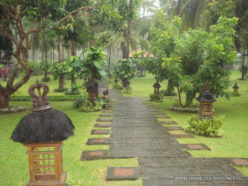 Download 990 Background Foto Indah HD Paling Keren